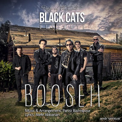 Black Cats - Boose